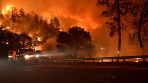 02bränder+kalifornien-5